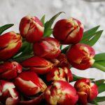 Een bruiloft met tulpen